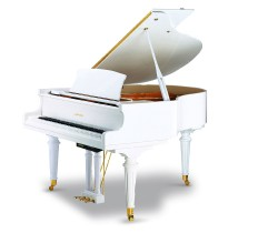 Ritmuller-PianoDisc-GD-160R