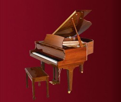 Đàn piano Essex EGP-155T