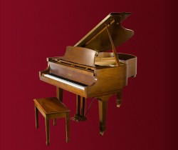đàn piano Essex EGP-161C