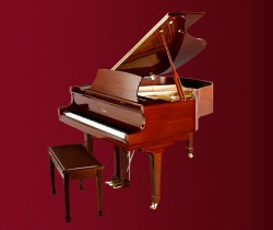 đàn piano Essex EGP-173C