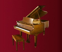 đàn Piano Essex EGP-183C