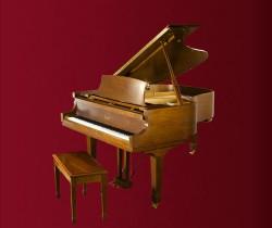 đàn Piano Essex EGP-183C