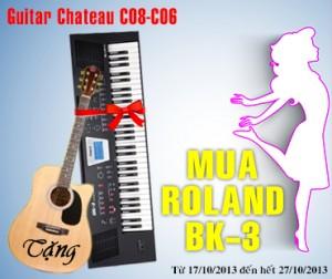 mua organ roland BK-3 tang guitar