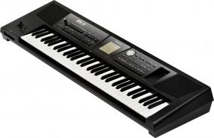 Dan organ Roland BK-5
