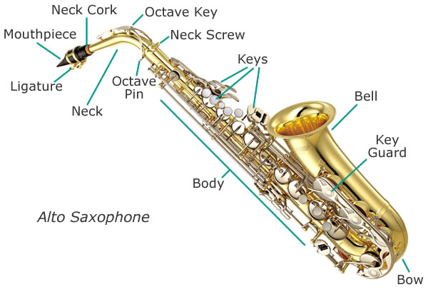 saxophone-diagram-alto
