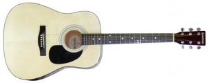dan Guitar SDG 6PK/NL