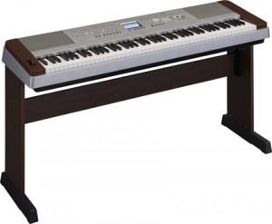 suoi-nhac-quang-trung-dan-organ-keyboard (3)