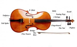 suoi-nhac-quang-trung-dan-violon (2)