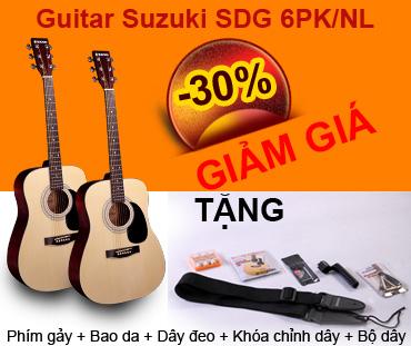 Guitar Suzuki SDG 6PK-NL