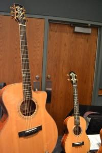suoi-nhac-quang-trung-dan-guitar-dan-ukulele (1)