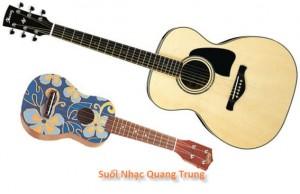 suoi-nhac-quang-trung-dan-guitar-dan-ukulele (6)