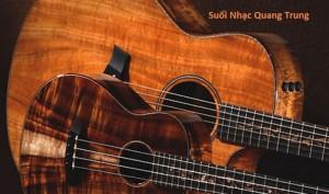 suoi-nhac-quang-trung-dan-guitar-dan-ukulele (7)