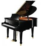 dan-piano-ritmuller-R8