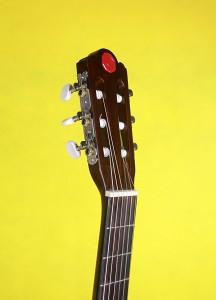 Đàn guitar Chateau