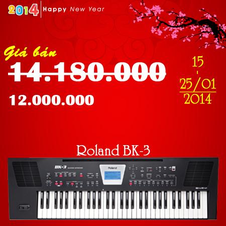 Roland BK 3