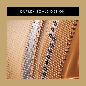 duplex scale design