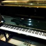 dan-piano-fukuyama-sons-alexander