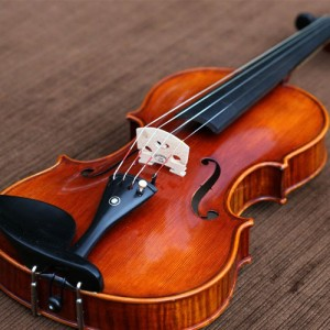 gioi-thieu-dan-violon