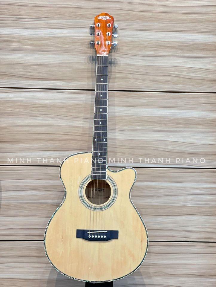 Guitar Caravan HS 4020